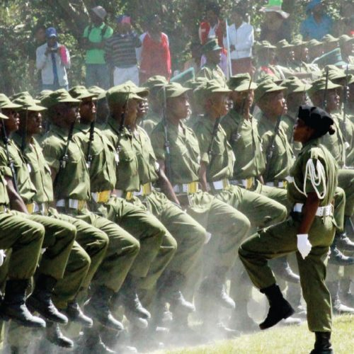 How Lesotho could abandon its army