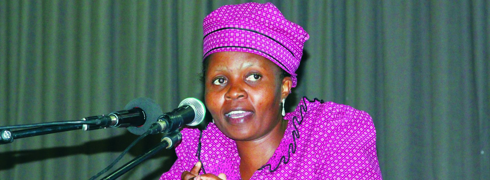 MPs grill ministers over service delivery