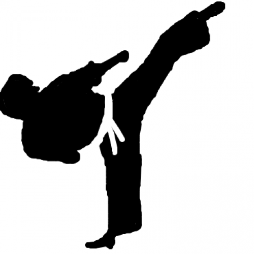 Taekwondo boss lauds Lesotho's show