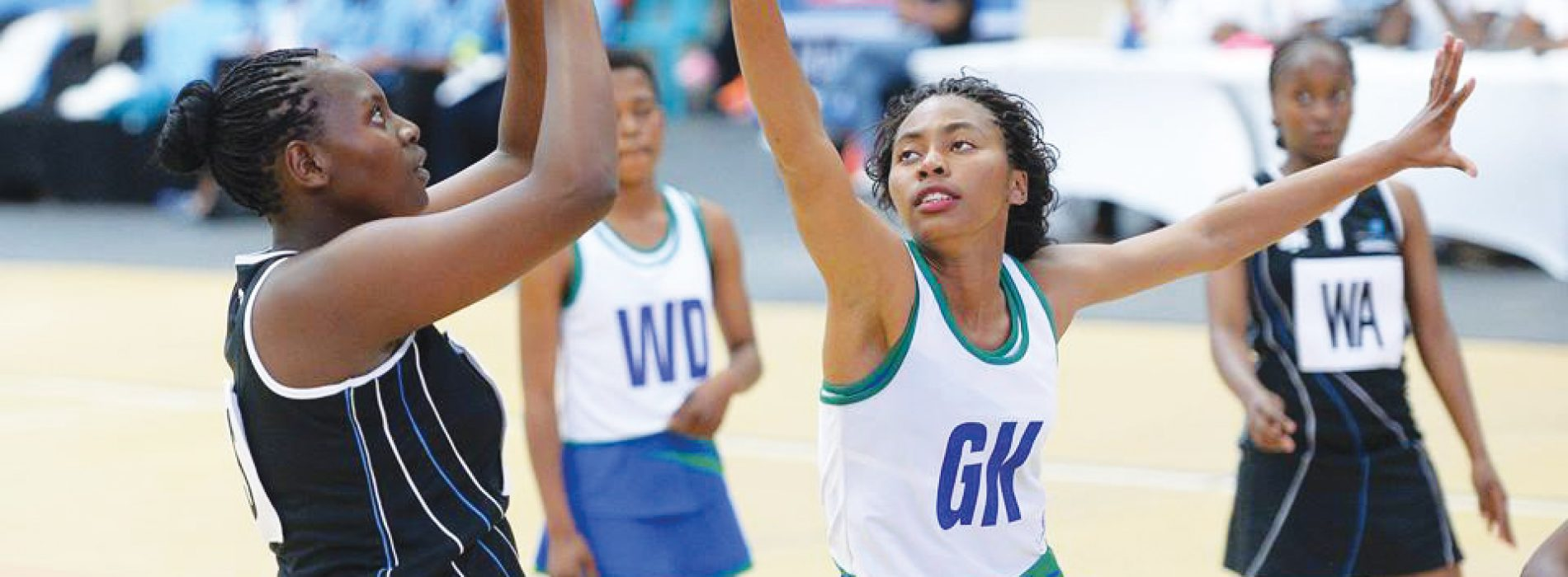 Netball team wants association dissolved