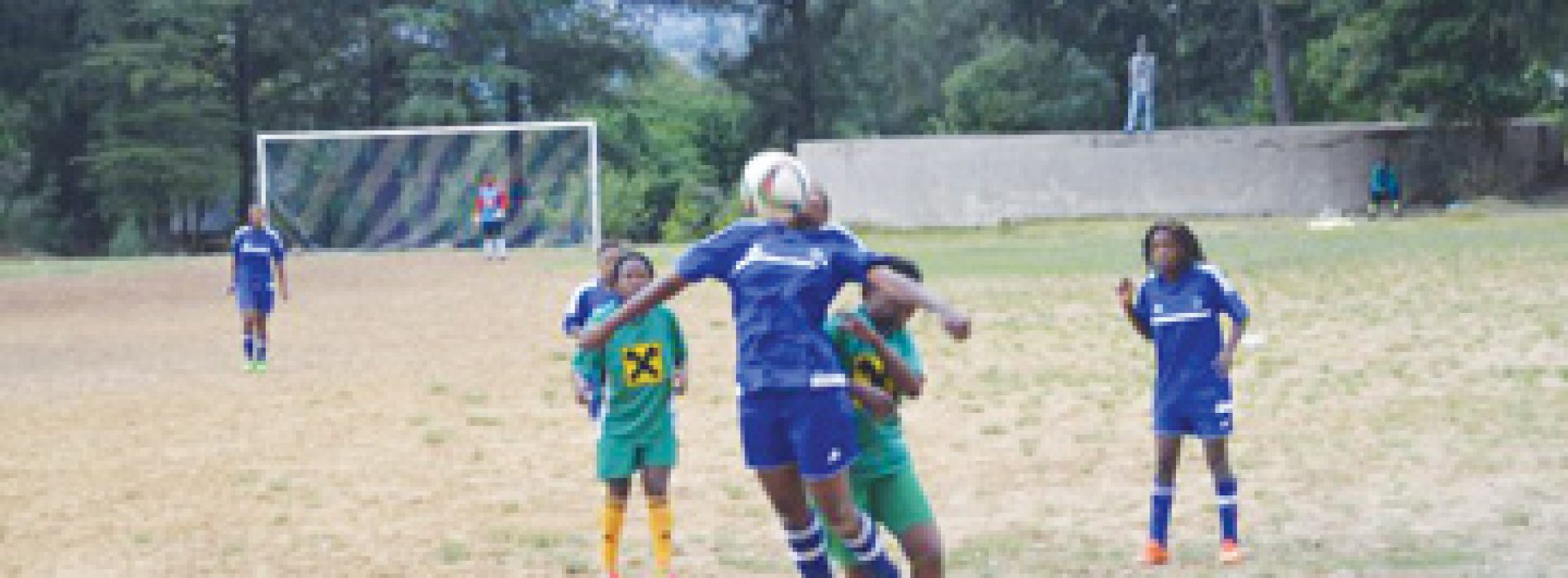 LDF Ladies a point away from league title
