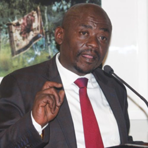 'Mining policy will grow  key sector'