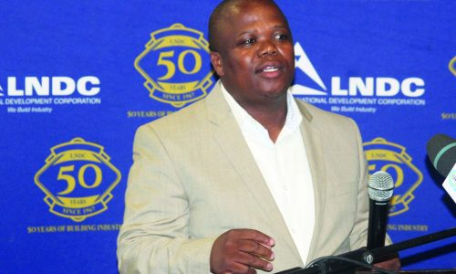 LNDC lays out vision