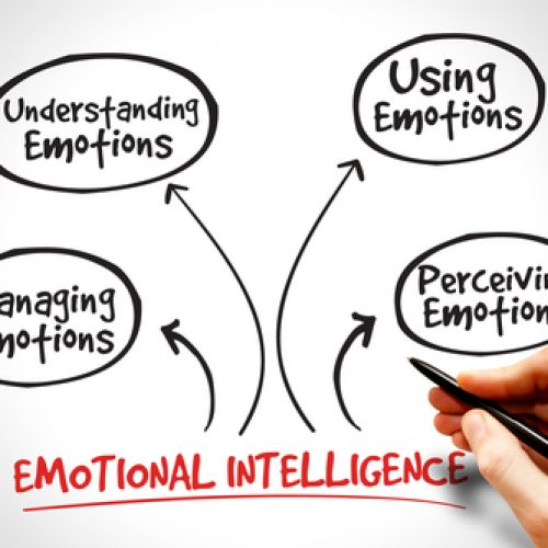 Emotional intelligence: a necessary skill for a leader