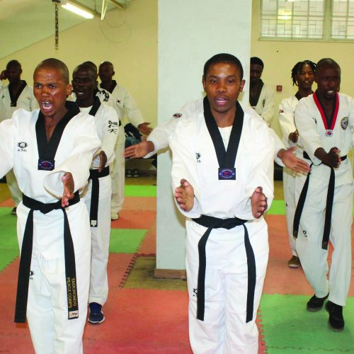 Taekwondo to improve fighters