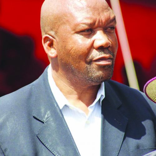 Fertilizer deal lands Hippo boss in trouble