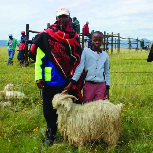 Uncertainty grips Lesotho's farmers