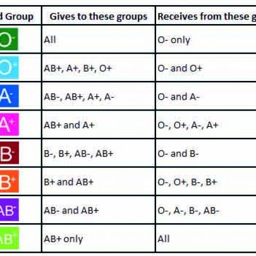 The O Blood Group
