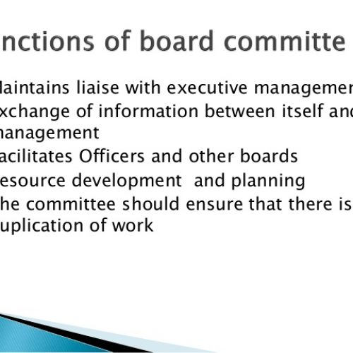 Board committees and their functions
