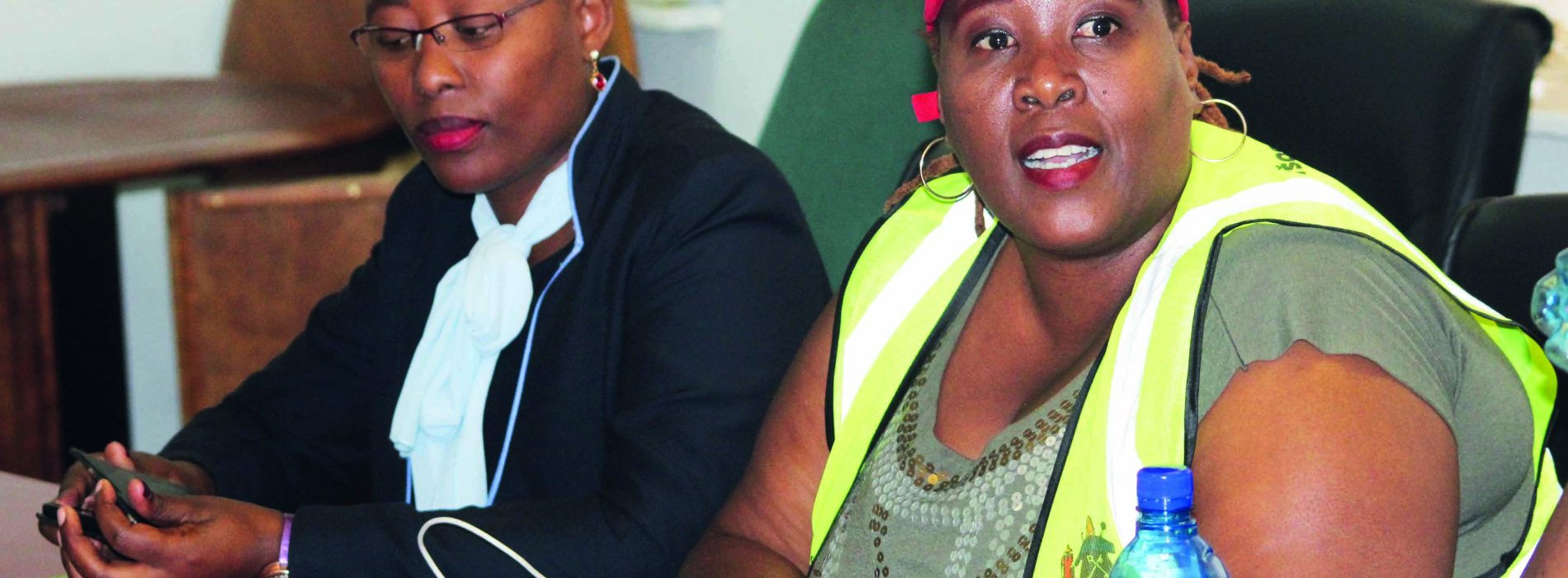 DCEO probes MCC tender