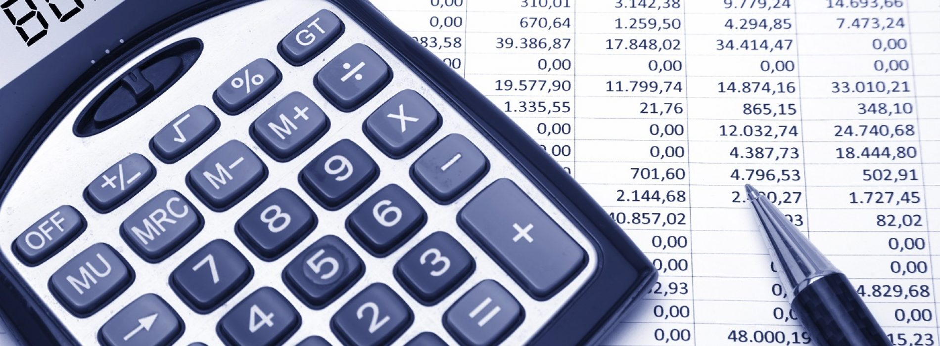 Behavioural aspects in budgeting