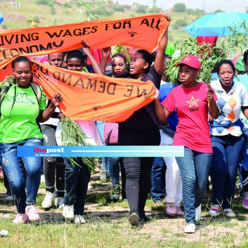 253 workers fired