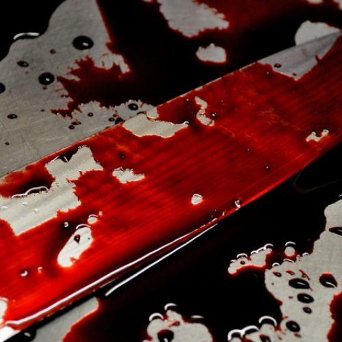 14-year-old hacks granny to death