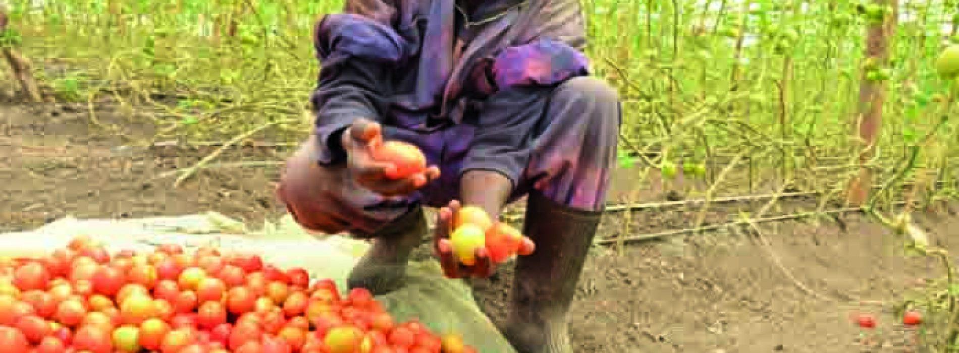 Ministry bans fresh produce imports