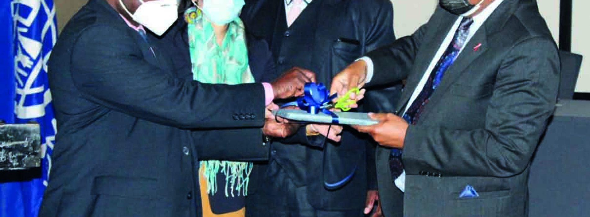 Tapping diaspora market
